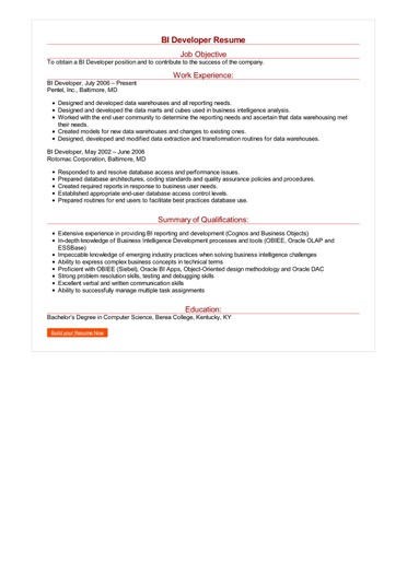 bi developer resume examples