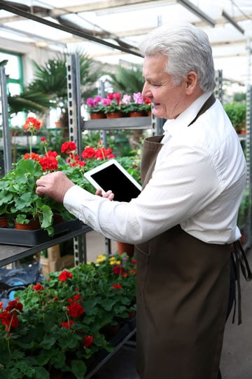 31 Good Jobs for Older People How Working Helps Seniors Thrive