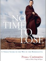 pema-chodron-no-time-lose