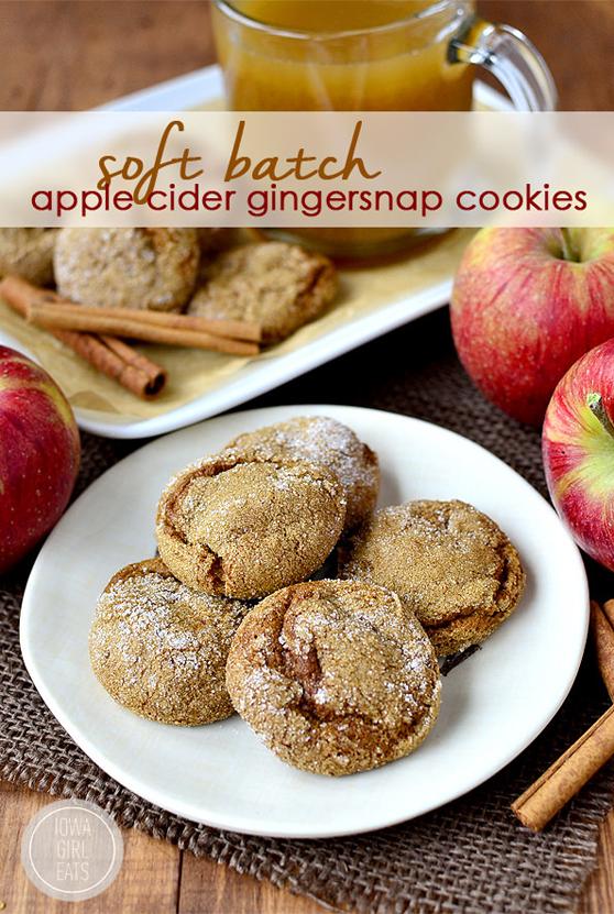 Soft-Batch-Apple-Cider-Gingersnap-Cookies-iowagirleats-01_mini