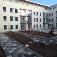 Green-tree Intensive Roof Garden Substrate - Green Roof ...