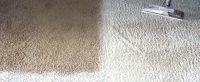 Gallery - Green Clean Carpet CleaningGreen Clean Carpet ...