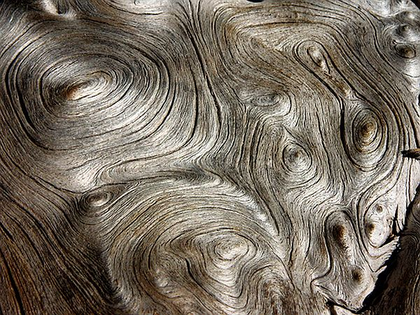 Liquid wood