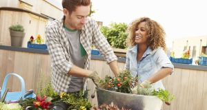 Mixed Race Couple Planting Rooftop Garden Together