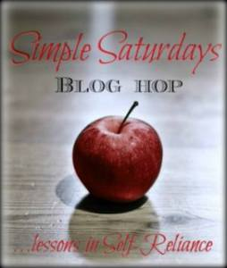 Simple Saturdays Blog Hop! Join us to share the best ideas the web has to offer!