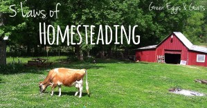 5 Laws of Homesteading