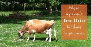 Why no, my cow isn't too thin, but thanks for your concern