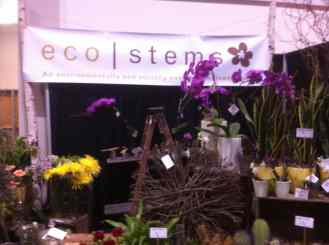 Eco Stems