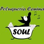 peluq-soul