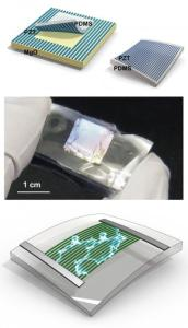 piezoelectric nanoribbon 172x300 New Piezoelectric Flexible Nanoribbons Prove 80% Efficient Conversion