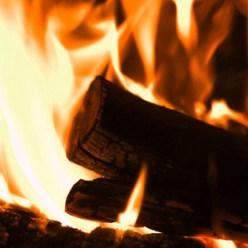 burning wood Biomass Produced CO2 Should Be Counted As Damaging to Global Warming to Some Extent, Researchers Say