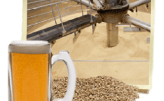 beer-malting-process