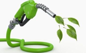 DOE_Biofuel