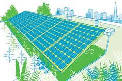 solar cell on green roof Green Roofs May Boost Solar Cell Efficiency