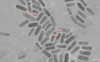 Gold Nanorods