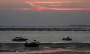 Evening in the mudflats 008 300x180 Scientists Find High Rate of Ocean Acidification Threatens Marine Ecosystems