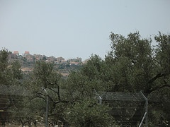 SPNI Boycotts Ministry of Environment Gala Over New Settlement