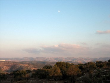 Eco Rabbi: Parshat Vayeshev – Love the Land and it Will Love You Back