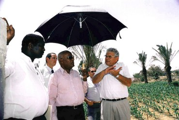 Growing An African Garden Market in Niger