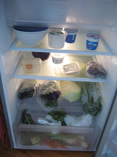 fridge-voyear-photo