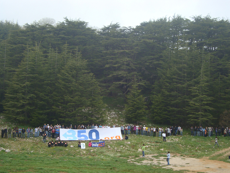 Activists in Lebanon Create Human Chain to Protect Iconic Cedars from Catastrophic Climate Change