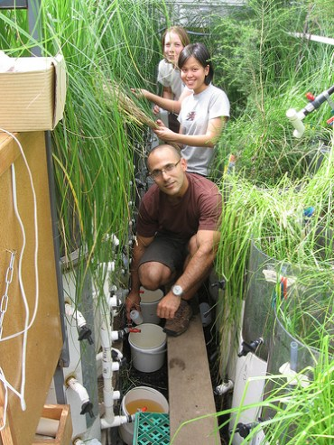 Giving Dialysis To Our Cities' Aquifers