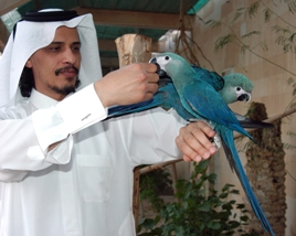 Qatar Establishing Gene Bank of Local Animals and Plants for Conservation
