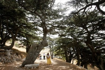 4 eco tourism adventures for a summer in Lebanon