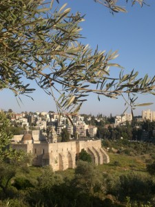 The Hills are Alive: Music Goes Green in Jerusalem's Valley of the Cross