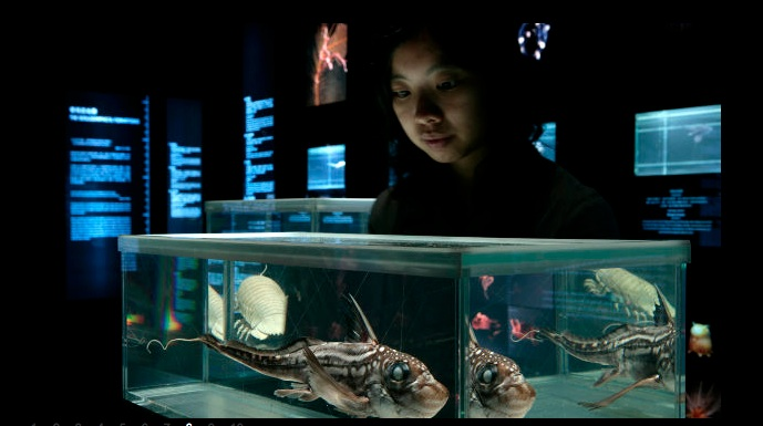 """""""The Deep"""" Exhibition Focuses on the Planet's Rarest Life Forms"""