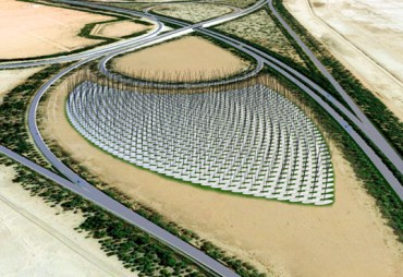 Windstalks May Compete with Turbines to Energize the Middle East
