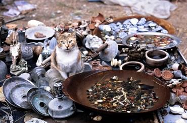 Lebanon's Five Biggest Environmental Headaches