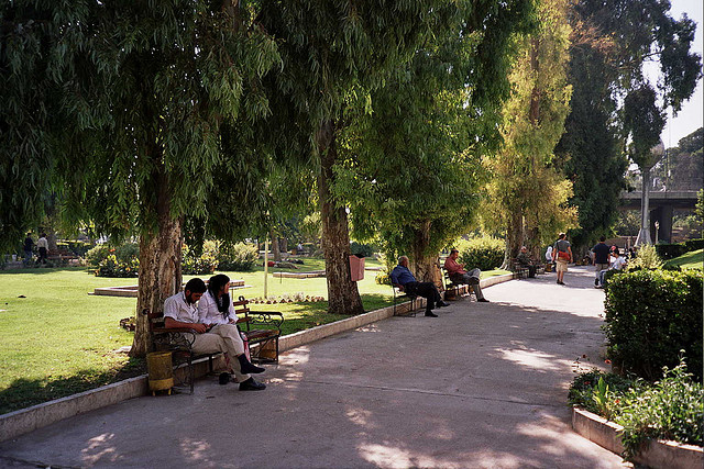 Syria Launches Its First 'Water-Scarcity Park'