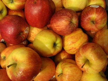Eco-Sexy Nutrition: An Apple a Day Increases Lifespan by 10%