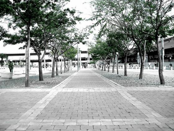 """urban greenery environment"""