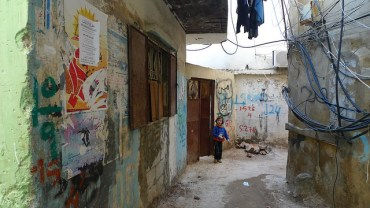 Greening The Refugee Camps of Lebanon