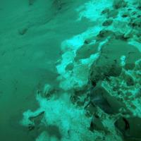 dead-sea-new-life-spring-naked-IMG_6832