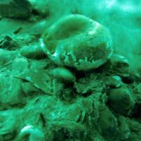 dead-sea-new-life-spring-naked-IMG_6920