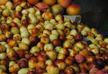 Jujubes, pomegranates and September seasonal foods of the Middle East