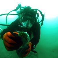 life-dead-sea