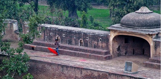 boy flying kite pakistan