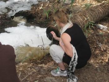karin kloosterman investigates jordan river sewage