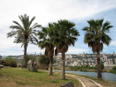 Israel and Palestine Join Hands Again to Build a Restorative Eco-Park