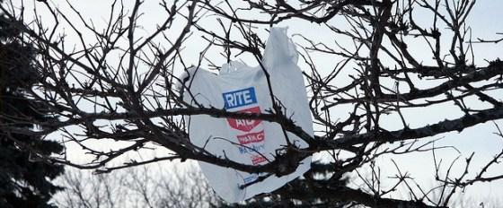 plastic bag blowing wind