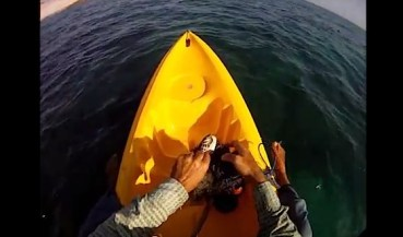 Eco-Crusader Frees Trapped Turtle in Oman (Video)