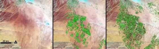 agricultural growth saudi arabia