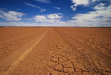 Mebiol's Futuristic Hydrogel to Grow Food on Desert Sand