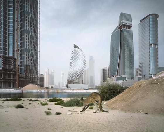 environmental art, photography, Richard Allenby Pratt, apocalypse, Abandoned, Dubai
