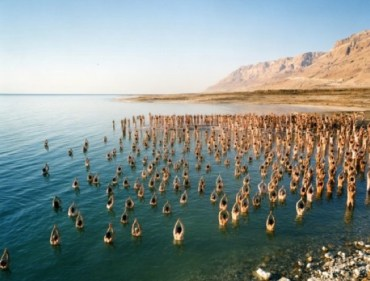 Spencer Tunick and Israel's Tent Protest Leader Team up For Dead Sea