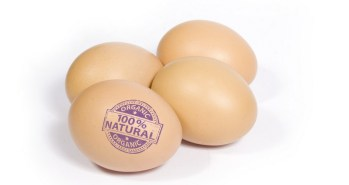 organic-eggs-label
